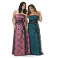 Plus Size Special Occasion