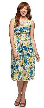 Classic Style Plus Size Sundress
